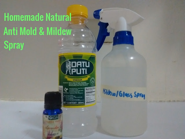 Homemade Natural Anti Mold and Mildew Spray