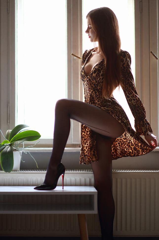 Sukienka w panterkę i czarne rajstopy ze szwem
