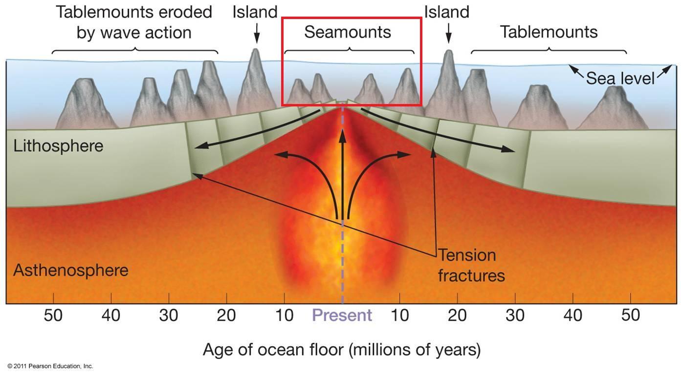 Ias Preparation Simplified Like Never Before Oceans