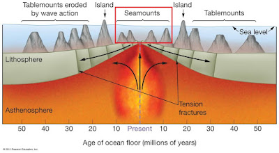 Ias preparation simplified like never before oceans for Ocean floor features definition