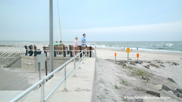 Best Place for Dolphin Watching in Wildwood New Jersey