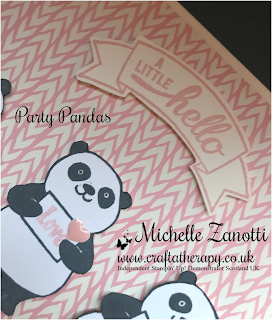 stampin' up! UK sale-a-bration party pandas Bundle of Love Specialty Designer Series Paper dsp baby badges & banners love