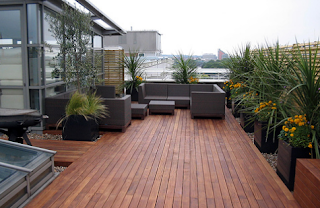 Melihat Tahapan Membuat Taman Atap