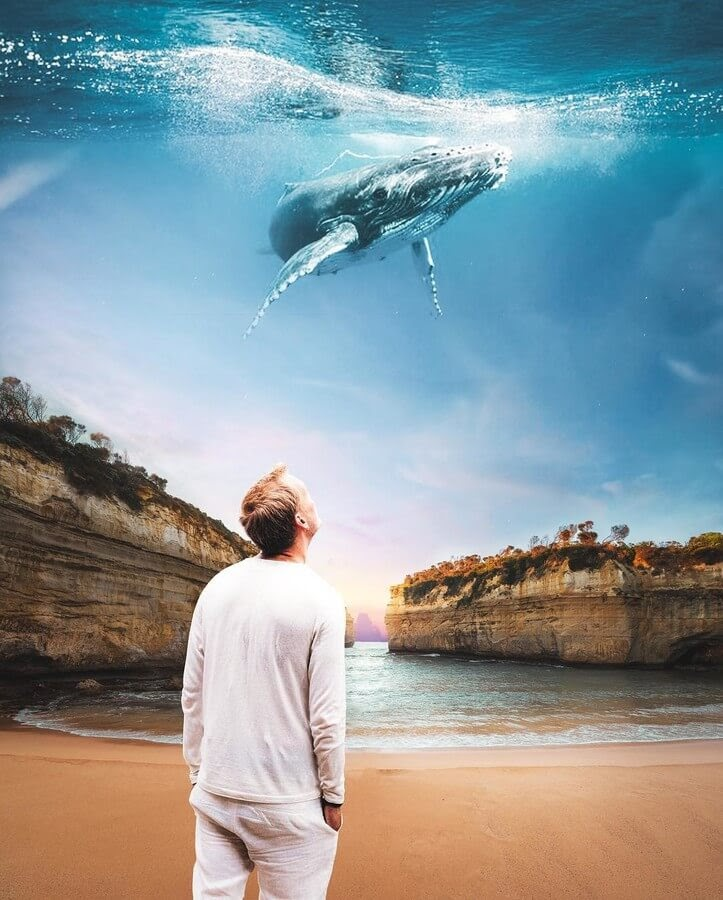 03-Observing-whales-Suri-Animals-www-designstack-co