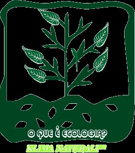 Ética Ecológica e o Paradigma Ecológico