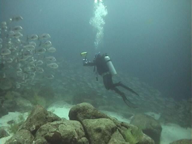 buceo galapagos