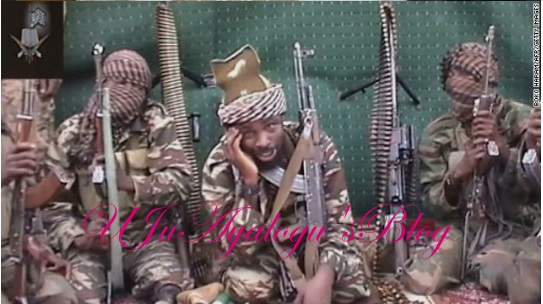 Why We Will Attack Saharareporters, Vanguard, Punch, Daily Sun, The Nation… – Boko Haram Reveals