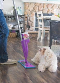 Keller Homeowner Cleaning Floor By Dog