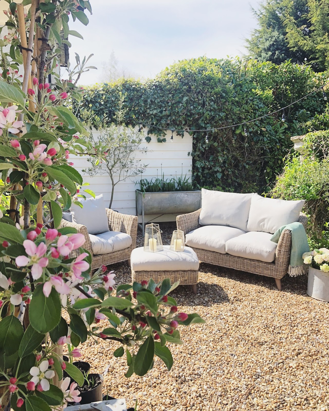 Garden // Al Fresco Living with M&S* - Roses and Rolltops
