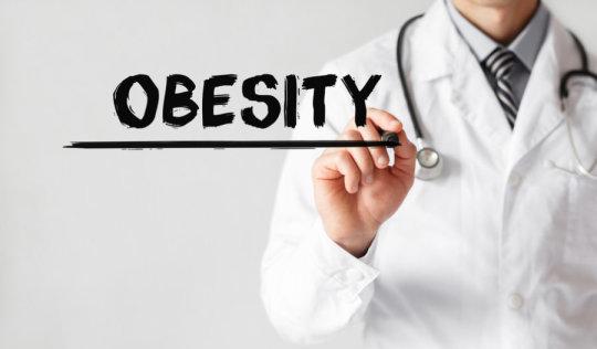 ems obesity journal