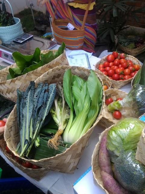 Berburu Sayuran Organik dan Makanan Sehat di Pasar Sehat Semarang