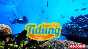 paket wisata open trip pulau tidung kepulauan seribu selatan
