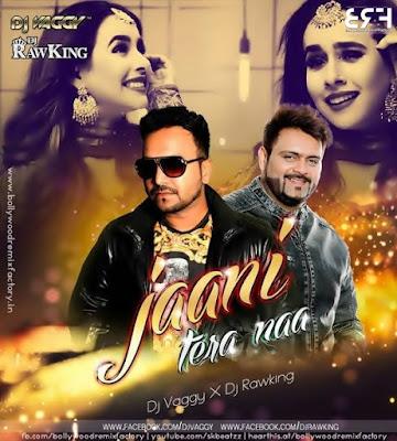 Jaani Tera Naa (Remix) - DJ RawKing & DJ Vaggy