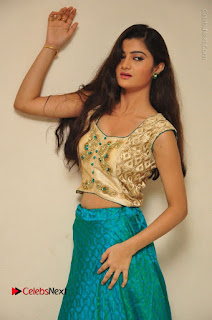 Telugu Actress Akshitha Stills at Prementha Panichese Narayana Movie Opening  0031.JPG