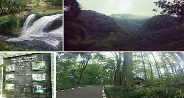 Taman hutan raya Juanda Dago bandung