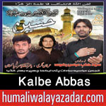 http://www.nohaypk.com/2015/10/kalbe-abbas-nohay-2016.html
