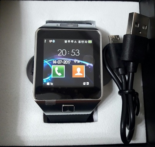 DZ09S 2G Smartwatch Phone (2019 Version)