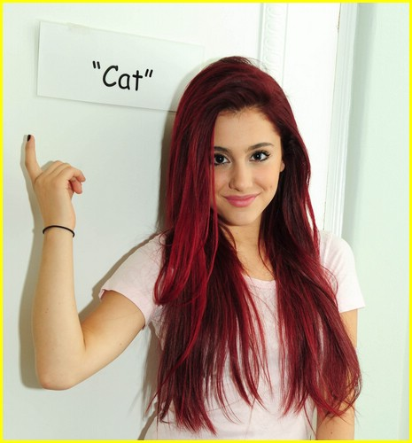 Ariana Grande Red Hair Color Name ...