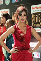 Videesha in Spicy Floor Length Red Sleeveless Gown at IIFA Utsavam Awards 2017  Day 2  Exclusive 11.JPG