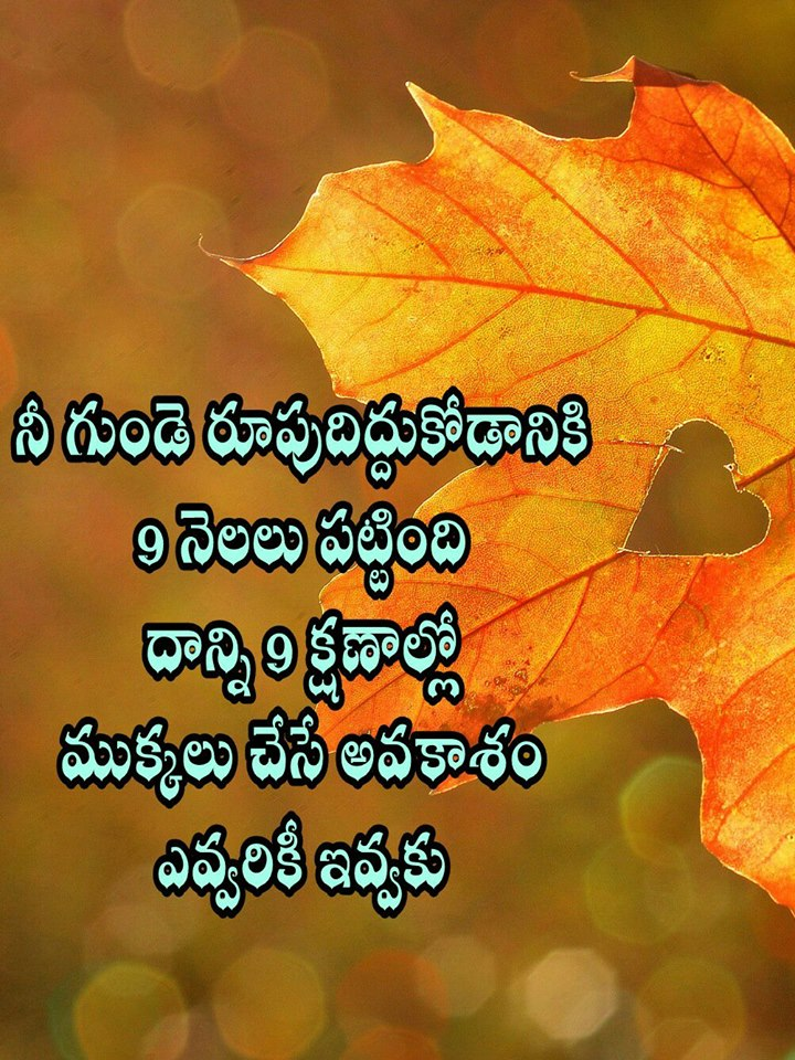 Love Quotes In Telugu Download Pungii Unique Revenge Quotes In Telugu