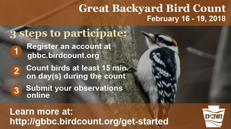 PA Environment Digest Blog: Make A Difference In Bird ...