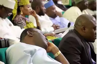 PHOTO NEWS: PDP House Of Reps Member Caught Sleeping During Buhari Budget Presentation