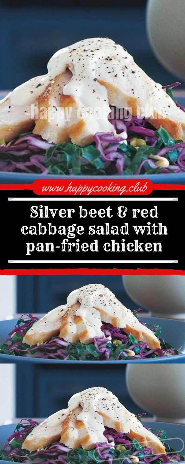 Silver beet & red cabbage salad with pan-fried chicken
