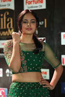 Nandita Swetha in a tight Green Choli Ghagra at IIFA Utsavam Awards March 2017 ~ 064.JPG
