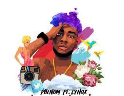 phenom ft lynox