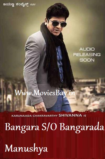 Bangara s/o Bangarada Manushya 2018 Hindi Dubbed 720p HDRip 850MB