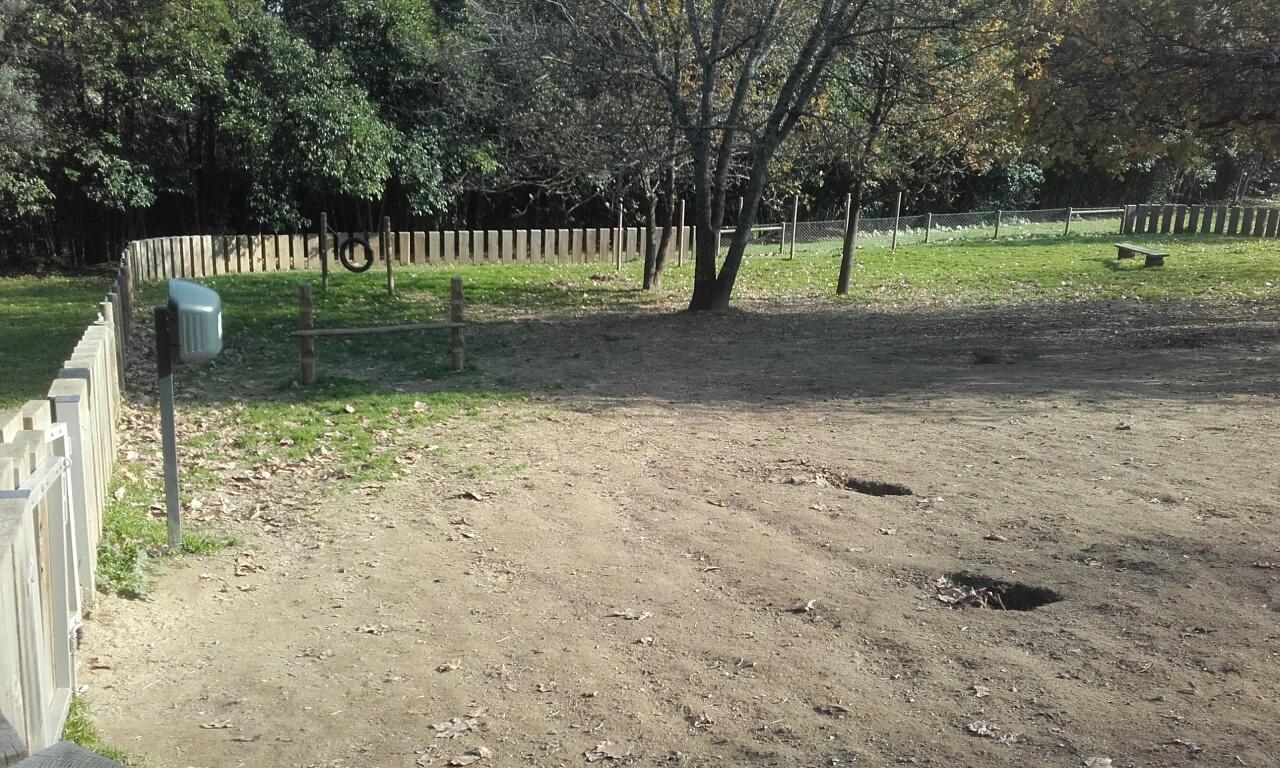 Zona de treino de cães
