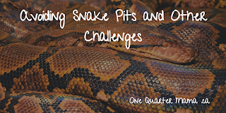 image of a brown snake with white writing Avoiding Snake Pits and Other Challenges by OneQuarterMama.ca