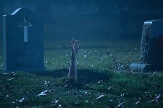 burying the ex ashley greene