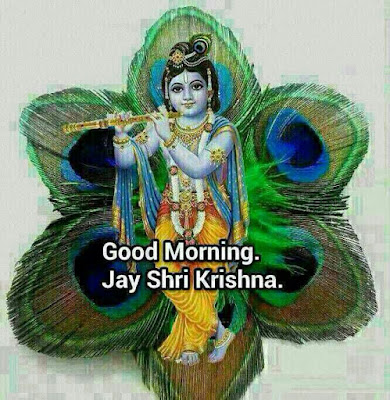 Good Morning Radha and Krishna images