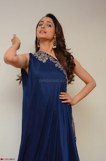 Pragya Jaiswal in beautiful Blue Gown Spicy Latest Pics February 2017 065.JPG