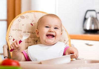 Menu Foods Baby 17 Months