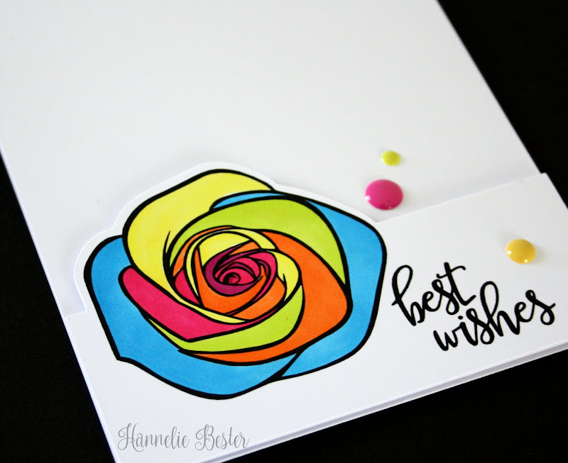 bright rainbow rose