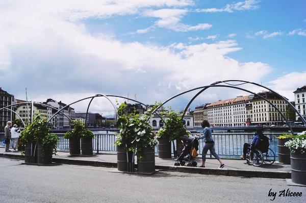 promenada-Geneava-lac