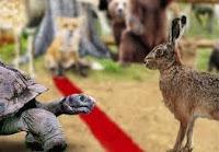 Cuento de la liebre y la tortuga