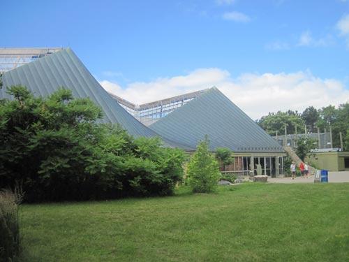African Pavilion