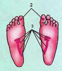 pijat refleksi infeksi saluran kencing pria dan wanita
