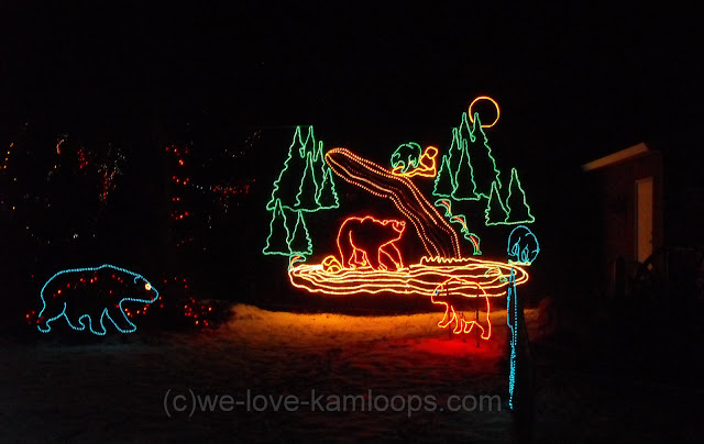 display of bears in colored lights
