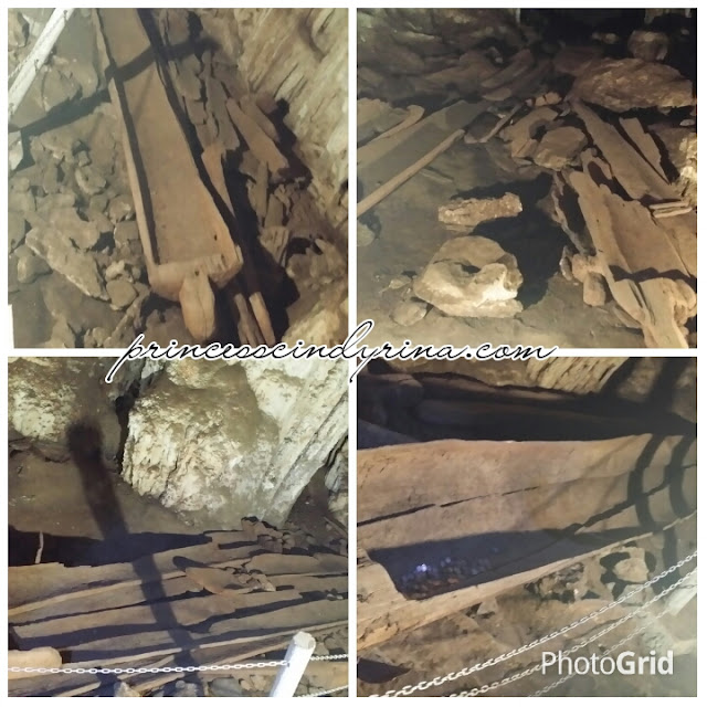 log coffins