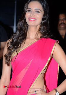 Meenakshi Dixit in Lovely Rani Color Saree and Beigh Blouse in Well Care Health Card Launch