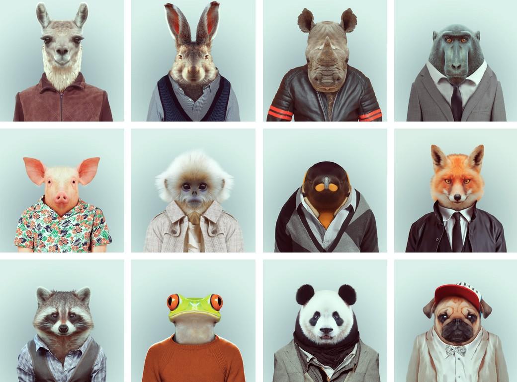 coloriage animaux imprimer