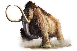 http://deanspencerart.deviantart.com/art/Wooley-Mammoth-145277909