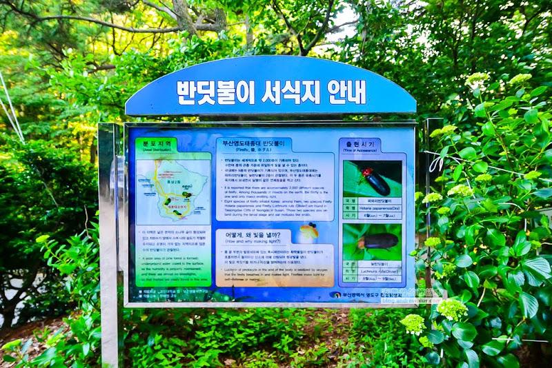 Taejongdae-23.jpg