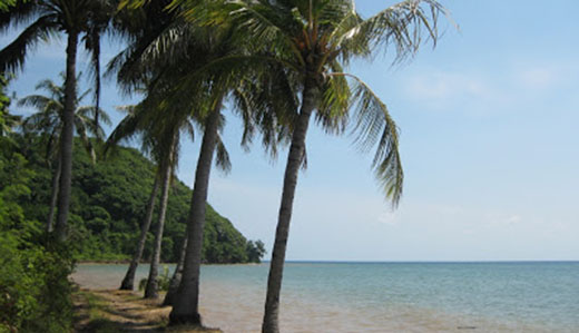 Pantai Mayangkara, Gresik