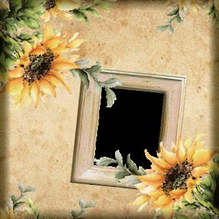 FRAME_A_16-06-18     -     FREEBIE
