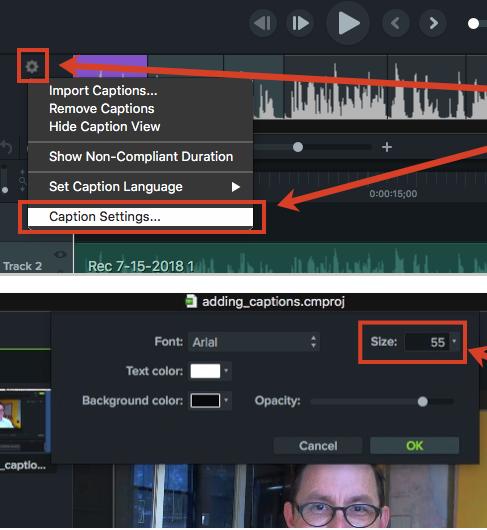 Menu de TechSmith Camtasia para la configuración de el tamaño de los subtitulos